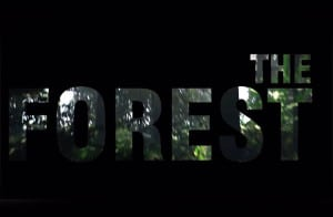 Дата выхода The Forest